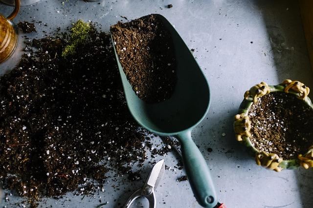 Jak powinno wyglądać jesienne nawożenie roślin?