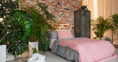 Rośliny do sypialni – 7 top roślin, które warto mieć w domu